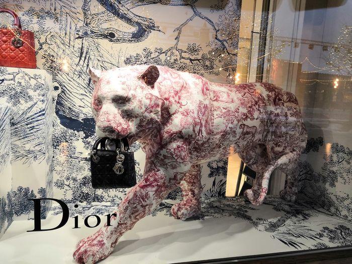 Dior Panther Tiger Marketing Amigo Moscow MyDreamToyotaSupra Pixelated Technology Close-up Handprint