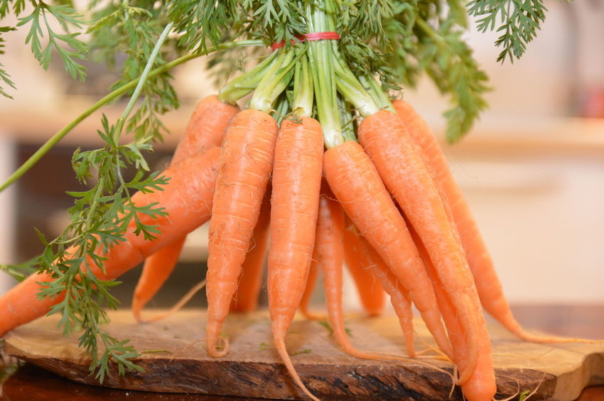 carrots orange Food Restaurant Green Color Food And Drink Healthy Eating Freshness Close-up No People Food Outdoors Nature