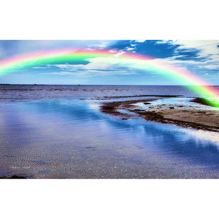 Rainbow Beach Beautiful Summer Summer2015 Ugglarpscamping Ugglarpcamping Ugglarp Bestmyphoto Bestoftheday Nature_pd Nature Beachday Beachesnresorts Beach Beachlife Sweden Swedish Sverige Vacation Relaxing Ig_week Ig_week_family