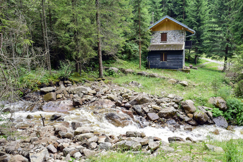 195/365 2017 Beauty In Nature Bolzano Coniferous Tree Cottage Forest House Italy July 14 Landscape Mountan Nature Nova Levante One Year Project Pine Tree South Tyrol Stone Stream Tree Trentino Alto Adige Water Waterfall Welschnofen Wood