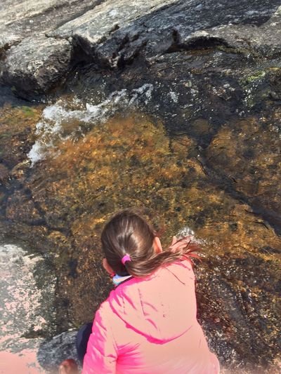 Water Drinking One Person Outdoors Nature Hiking Arctic Circle Greenland Global Warming Beauty In Nature Pure Water Arctic Summer Nature