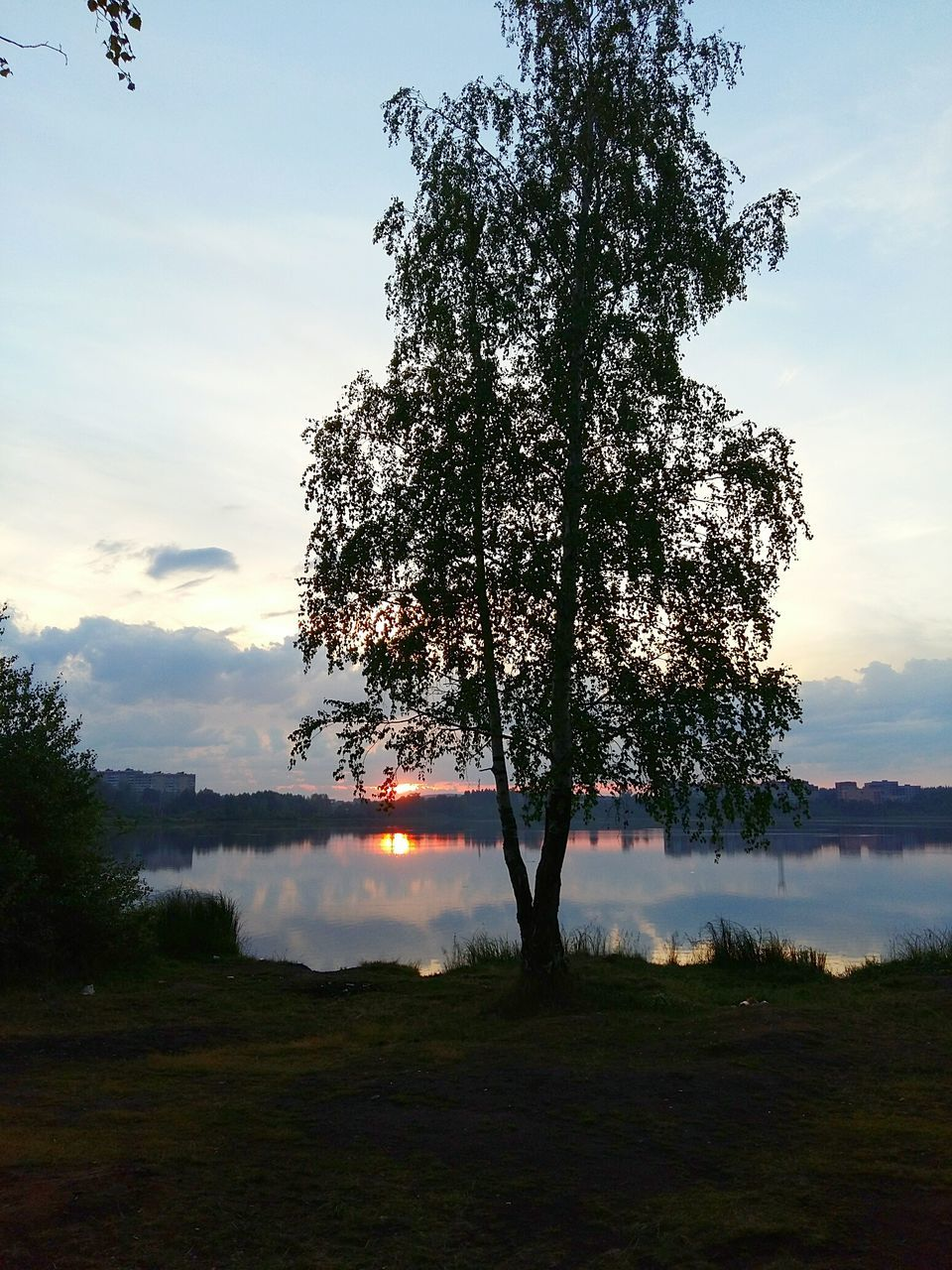 sky, tree, nature, beauty in nature, cloud - sky, tranquility, scenics, outdoors, water, smoke - physical structure, tranquil scene, landscape, no people, lake, sunset, grass, forest fire, day