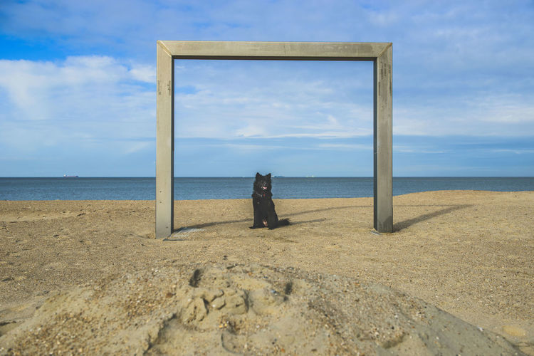 Architecture Beach Beauty In Nature Cloud - Sky Day Eurasian Eurasier Horizon Over Water Landscape Nature No People Outdoors Sand Scenics Sea Sky Tranquil Scene Tranquility Water Dogslife Northsea Pet Portraits