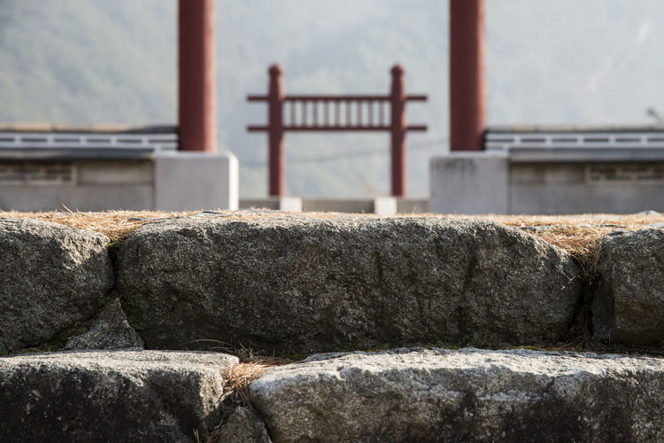 Steps Against Torii Gates