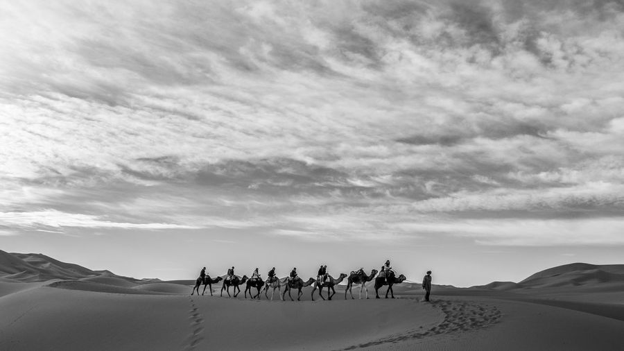 Group Of People Riding Camels In Desert Against Sky