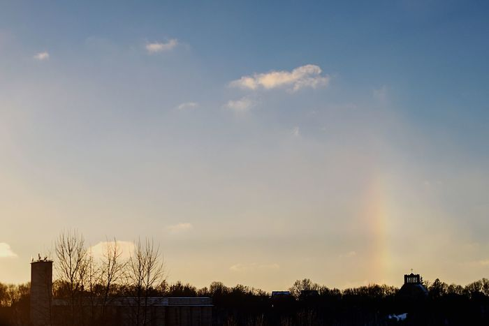 Sun Dog (Vertical Rainbow) | Tree Sky Nature No People Beauty In Nature Outdoors Tranquility Tranquil Scene Building Exterior Bare Tree Scenics Sun Dog Rainbow Vertical Rainbow Sunset Winter Cold Temperature