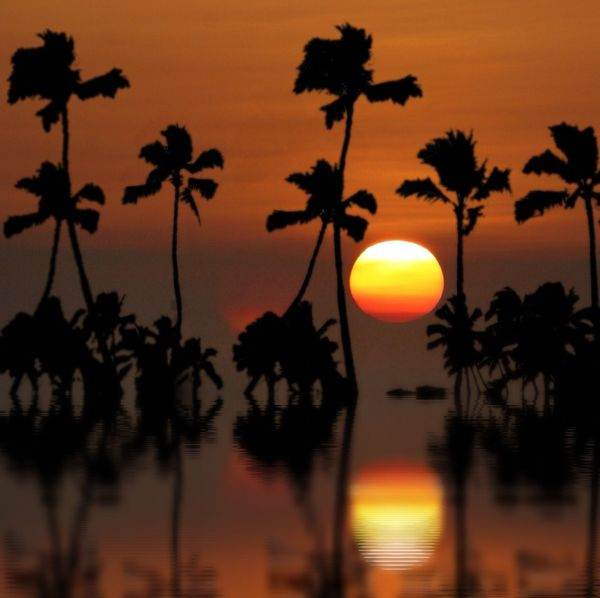 Hawaiian sunset The Illusionist - 2014 EyeEm Awards