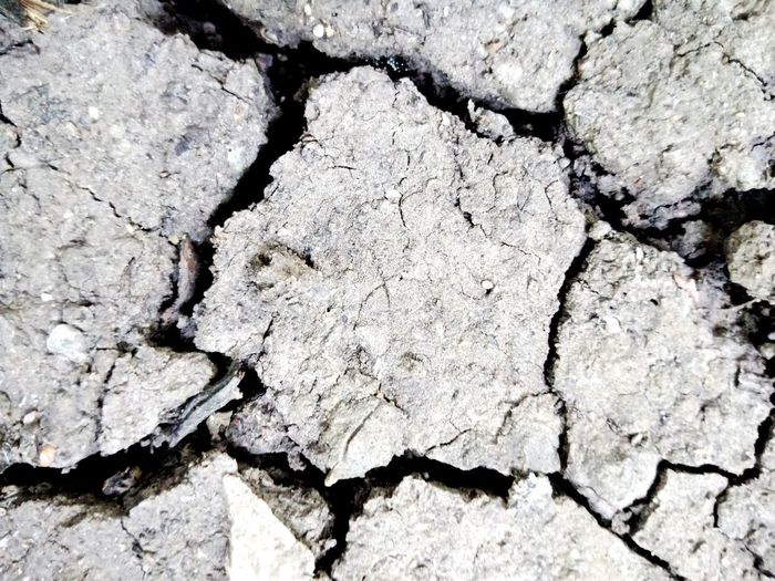 background earth Soil Earth Land Ground Clay Surface Terrafirma Laterite Loam Mould Sandy Soil Firm Ground Backgrounds Full Frame Textured  Pattern Cracked Abstract Rough Close-up Weathered