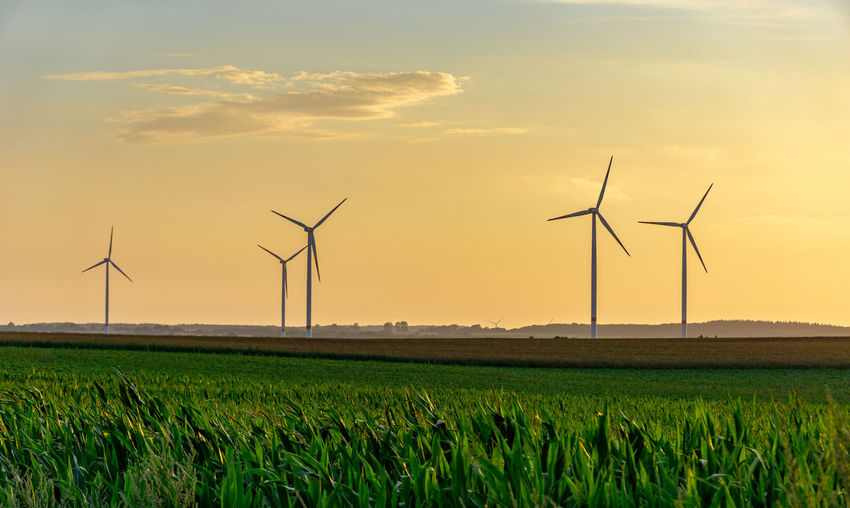 Windmills on field against sky during sunset