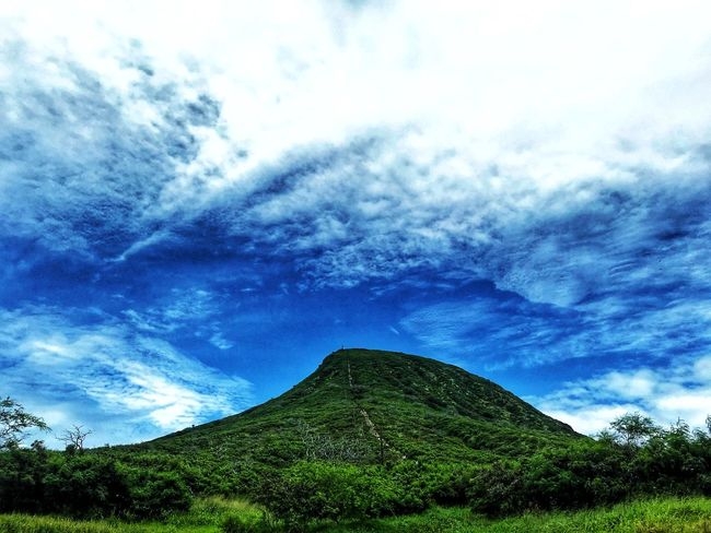 Koko Head Outdoors Hawaii Oahu Ocean Photo Photography Cloud - Sky Sky Plant Tree Low Angle View No People Beauty In Nature Tranquility Nature Tranquil Scene Scenics - Nature Day Growth Blue Green Color Outdoors Mountain Non-urban Scene Idyllic Land
