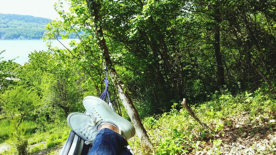 Quiet Afternoon Nap From My Point Of View Over The Trees Lake And Forest Human Leg Jeans Casual Clothing Leisure Activity Water Personal Perspective Nature Forest Park Quiet Place  Enjoying Nature Hammock Time Take A Rest Sleeping In The Sun  Happy Sunday Out Of The Box