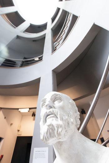 Greek Hippocrate. History Medicine Museum Statue Stone White