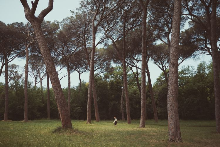 Like us, trees grown up following different ways, different dreams. Wandering in Rome with Valeria. Tree Nature Forest Outdoors Landscape Beauty In Nature People Rome EyeEm Nature Lover Earth Isolated Freedom Portrait Of A Woman EyeEmNewHere EyeEm Best Shots EyeEm Gallery Portrait Travel Destinations Beauty In Nature EyeEmNewHere The Portraitist - 2017 EyeEm Awards Lost In The Landscape Lost In The Landscape