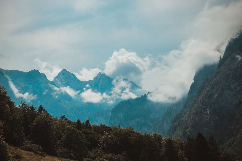 Alpen Alps Bavaria Beauty In Nature Day Forest Landscape Mountain Mountain Range Nature No People Outdoors Peak Range Scenics Sky Tranquil Scene Tranquility Tree Perspectives On Nature