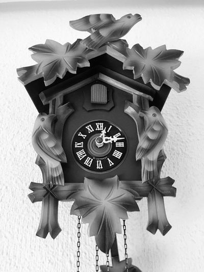 Madera Cuco Reloj Clock Time Instrument Of Time No People Wall - Building Feature Indoors  Number