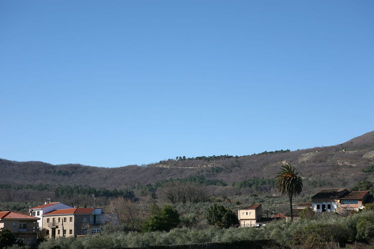 Houses and buildings against clear blue sky