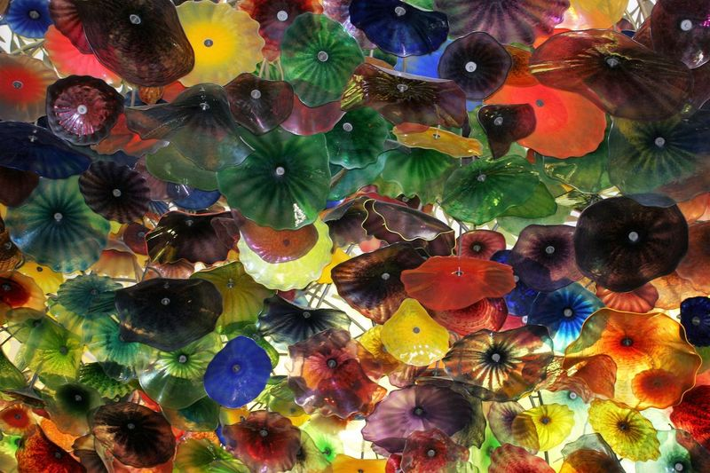 Chihuly Glass at The Bellagio Hotel and Casino Bellagio Hotel Chihuly Chihuly Glass Chihuly Las Vegas Dale Chihuly Glass Art Backgrounds Chihuly Garden And Glass Close-up Dale Chihuly Day Full Frame Multi Colored No People The Bellagio