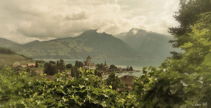 Spiez in the Berner Oberland/Switzerland Switzerland EyeEm Best Edits Thuner Lake Spiez