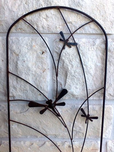 Black & White Dragonfly Iron Arch Black And White Black Iron Black&white Blackandwhite Decorative Dragonflies Insect Limestone Limestone Wall Simple White Background
