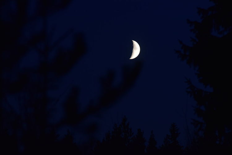 Beauty In Nature Crescent Dark Moon Mystic Night Night Forest Nightphotography No People Sky