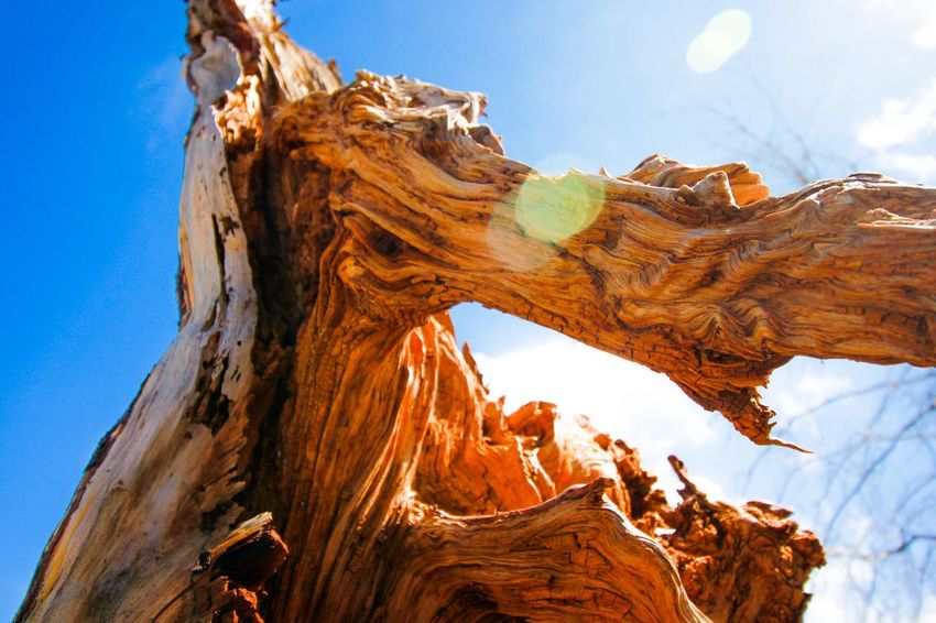 Everything has Beauty Sky Beauty In Nature Low Angle View Rock Formation Rock Geology Rock - Object Travel