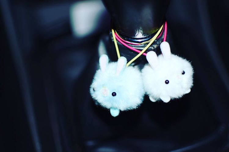 Close-up Shiftknob Toyota Tacoma Xrunner Stuffed Animals Stuffed Toy