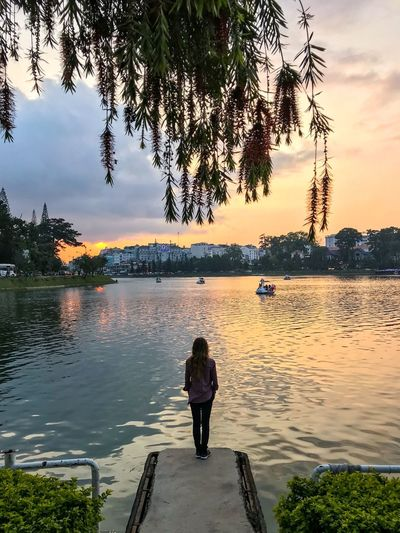 Rear View Of Woman Standing On Pier By Lake During Sunset Paddleboat Cityscape Urban Landscape Fence Branches One Woman Only Symmetry Vertical Symmetry Vietnam Highlands Travel Destinations Vietnam Standing Water Tree Sky Real People Plant Lifestyles Beauty In Nature One Person Nature Sunset Scenics - Nature Leisure Activity Lake Rear View Reflection Cloud - Sky Tranquility Outdoors