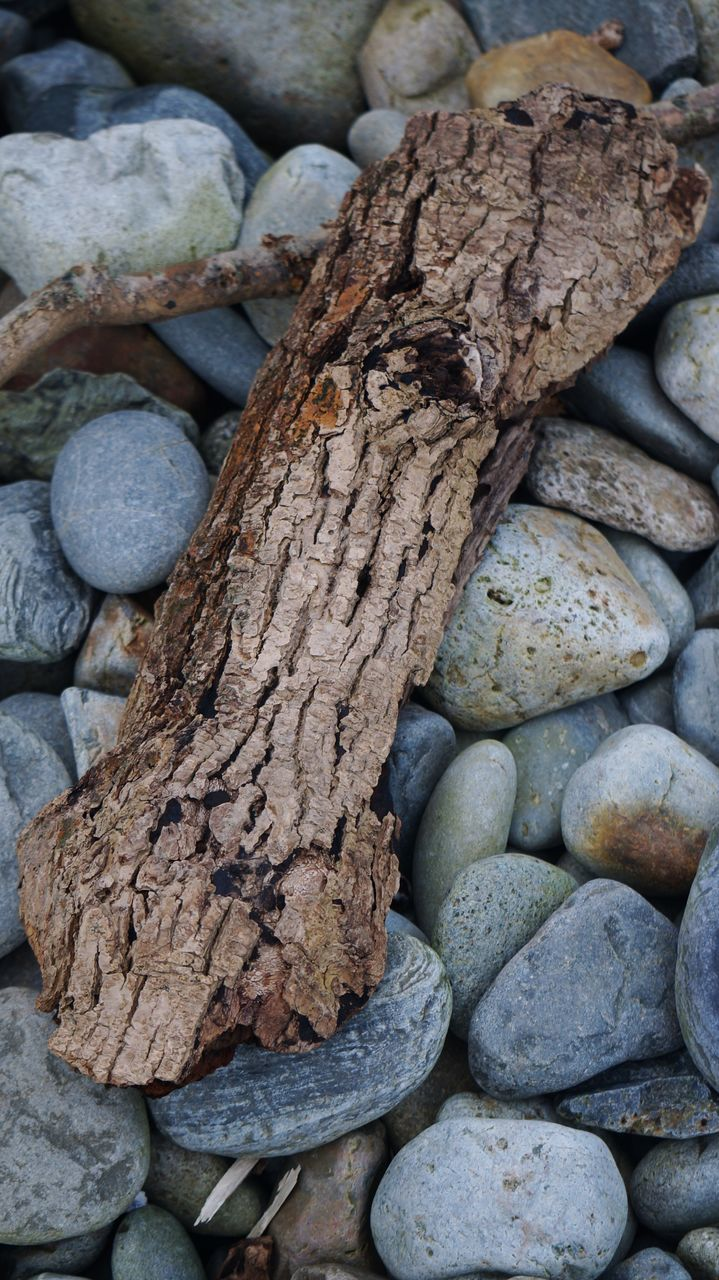 High Angle View Of Driftwood On Stones