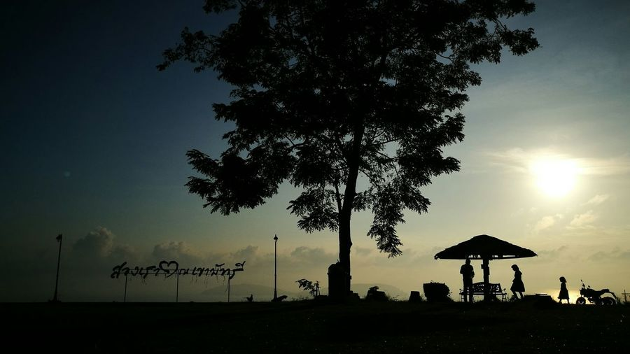 Life. Silhouette Landscape Sunrise Sunset First Eyeem Photo Tree Trunk Calm Hut Tropical Tree