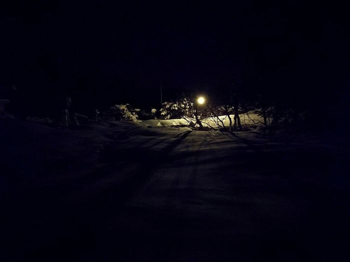 Night Illuminated Snow Winter Nature Outdoors Beauty In Nature Moody Lights Nature Lonely Night Lonely Light