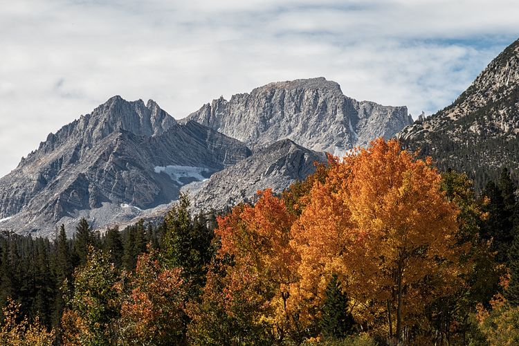 A little fall color always brightens up the day. 🍁 Beauty In Nature Sky Mountain Tree No People Plant Nature Outdoors Tranquil Scene Non-urban Scene Snowcapped Mountain Snow Day Tranquility Cold Temperature Cloud - Sky Scenics - Nature Growth Winter Mountain Range