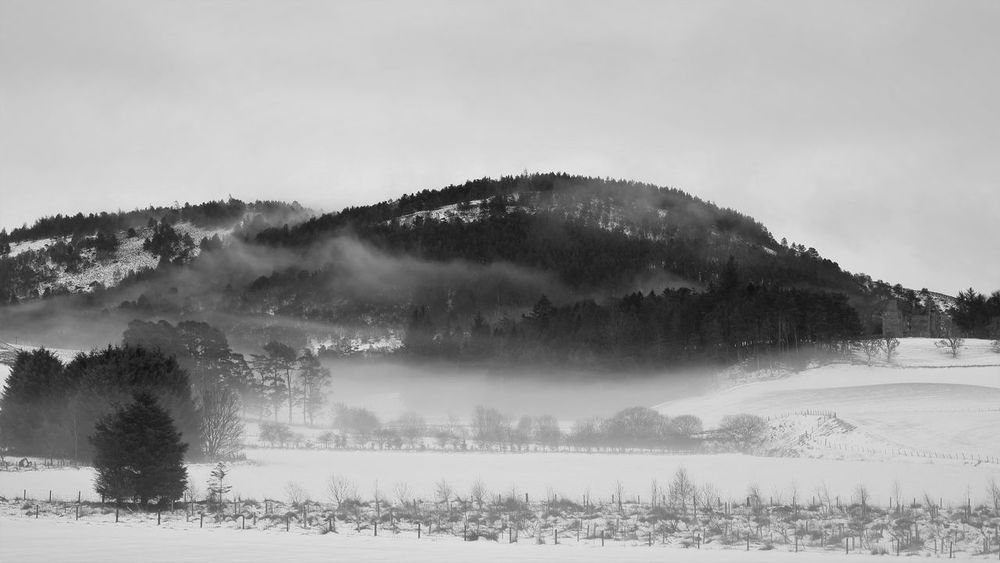 Black And White Day Freezing Freezing Fog Glenbuchat Landscape Misty Mountains  Mountain Nature No People Outdoors Scenics Snow Strathdon Tree Whispy Clouds