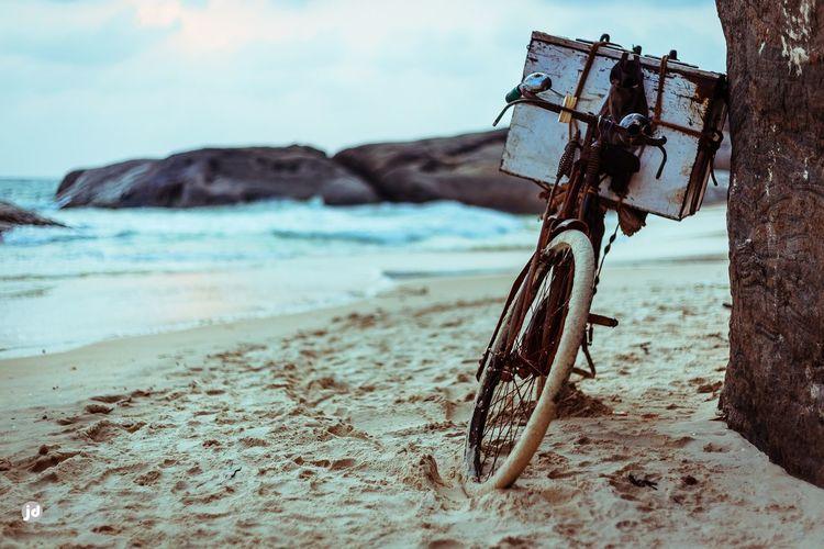 Have Lod Bikeshop