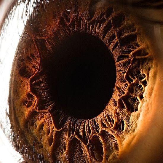 Humaneye