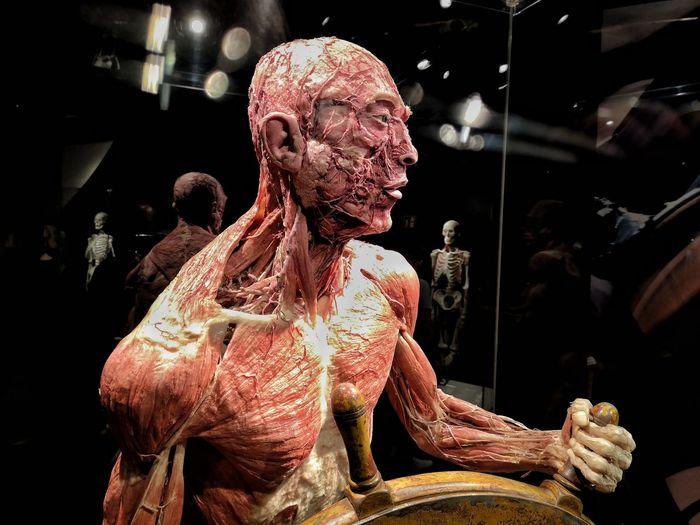 Body Works V //