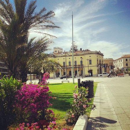 Comune Olbia  Sardegna Sardinia beauty fioribellissimacitta'goodday beautiful beautifulday ♡