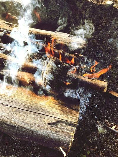 Vermiculite Campfire Fire And Flames Vermiculite Mineralogy Sunlight Nature No People Water Day Animal Animal Themes Outdoors Close-up