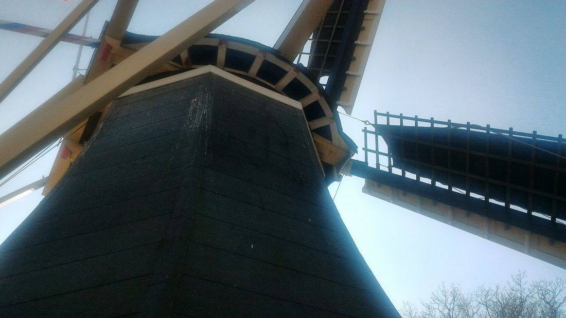 Windmill Sky Low Angle View Day Outdoors Netherlands Holland Keukenhof Park Spring Architecture Sunny Day April 2k17