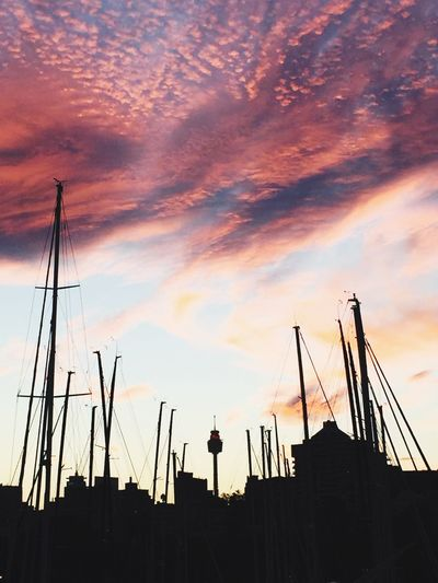 Low Angle View Of Silhouette Sailboat Masts Against Sky During Sunset