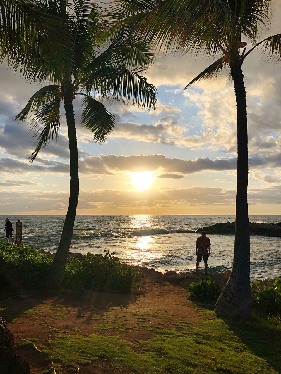 water, plant, tree, sky, beauty in nature, scenics - nature, sea, palm tree, beach, land, sunset, cloud - sky, nature, real people, tranquil scene, tropical climate, tranquility, growth, tree trunk, horizon over water, outdoors