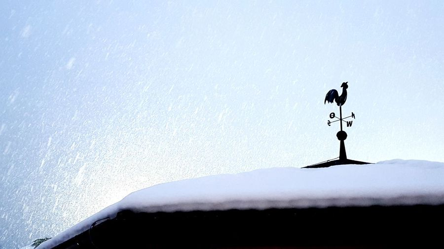Weather Vane Animal Representation Roof Day Direction Communication Sky Outdoors Architecture Nature Travel Destinations Slovenia Vacations Cold Temperature Snow Eyeem Market Environment Illuminated EyeEm The Best Shots The Week On EyeEm