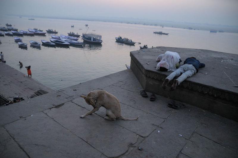 The lazy morning ASIA Boat Dawn Indoors  Lifestyles Outdoors Relaxation Sleep The Street Photographer - 20I6 EyeEm Awards Varanasai Water