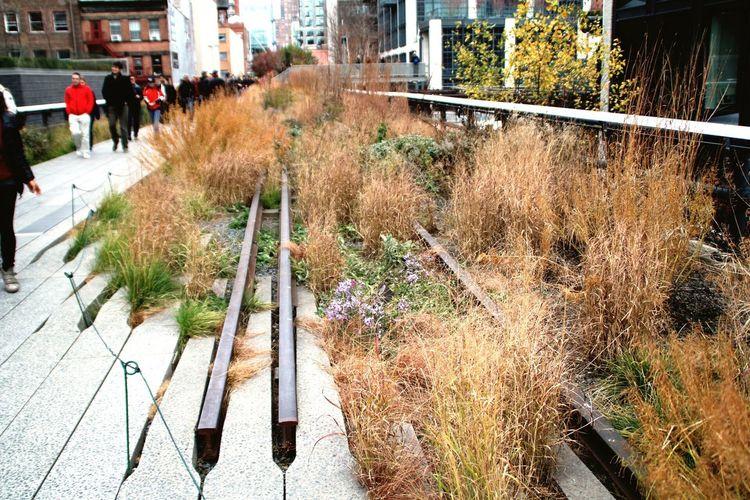 NYI❤️YOU Highline Manhattan NYC New York
