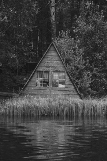 House amidst plants and trees by lake in forest