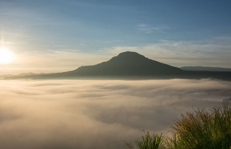 Mist over the mountain in the morning time, North of Thailand Sky Scenics - Nature Beauty In Nature Mountain Tranquil Scene Tranquility Cloud - Sky Non-urban Scene No People Nature Idyllic Fog Water Mountain Range Sunset Outdoors Remote Plant Environment Mountain Peak Mountail Morning Natural Sunrise Light Misty Landscape Tropical Valley Beautiful Nature