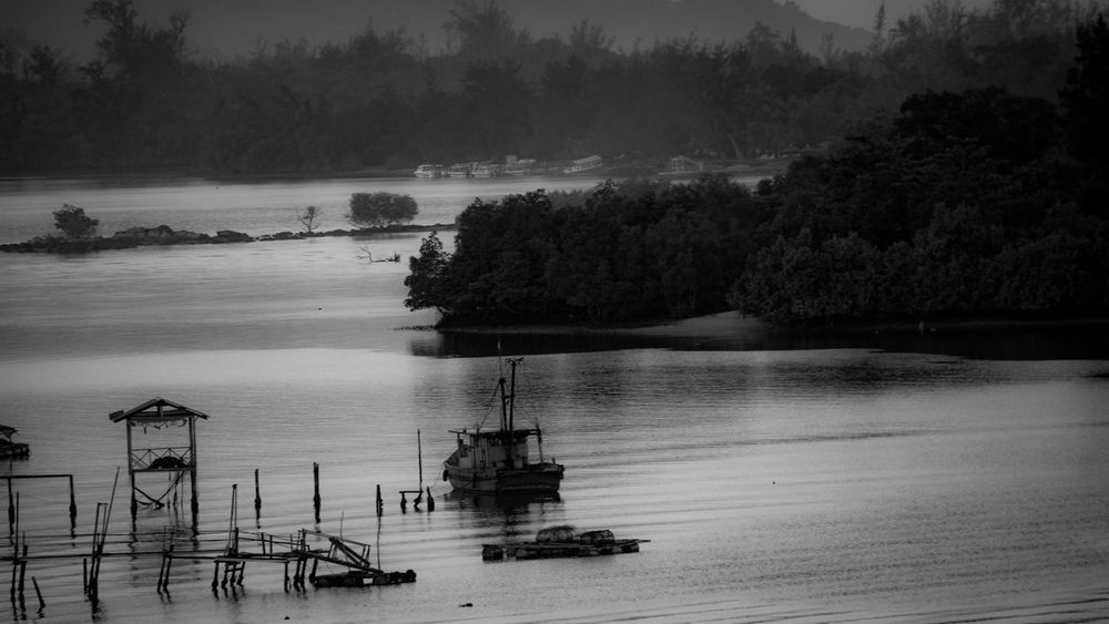 Stilt House Black And White Wooden Stilts Tree Water Nature No People Tranquility Beauty In Nature Tranquil Scene Outdoors Day Scenics Sea Built Structure Sky Architecture