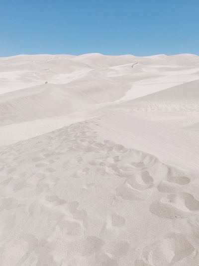 Sand Dunes Landscape Land Scenics - Nature Sand Climate Tranquility Environment Desert Arid Climate Sky Nature Tranquil Scene Beauty In Nature Sand Dune Clear Sky Blue Day Remote Copy Space No People