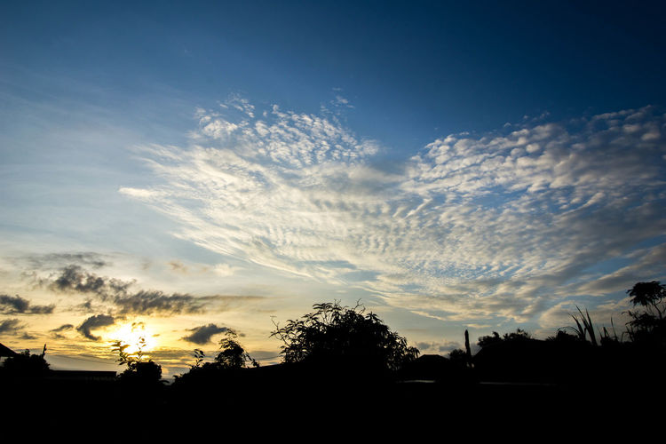 Beauty In Nature Cloud - Sky Nature No People Outdoors Scenics Silhouette Sky Sunset Tranquil Scene Tranquility Tree