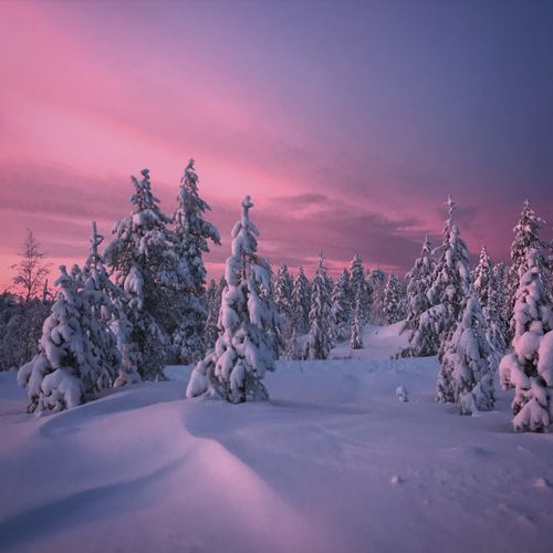 Magical Arctic Circle EyeEm Selects Snow Cold Temperature Winter Nature Beauty In Nature Shades Of Winter Sunset Landscape No People First Eyeem Photo