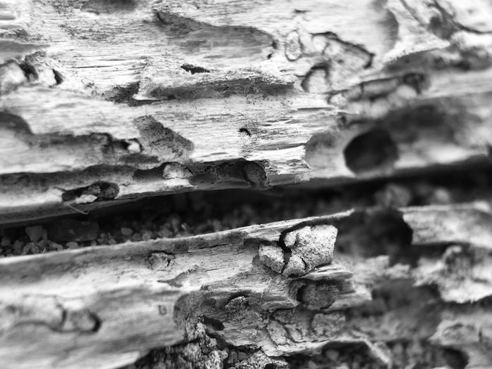 Black And White Friday Textured  Full Frame Day Weathered Rough Close-up Built Structure No People Outdoors Backgrounds Architecture